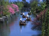柳川川くだり
